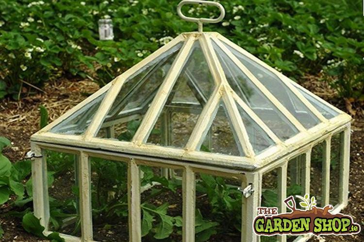 How To Build A Cloche For The Garden Garden Ftempo